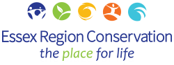 Essex Region Conservation Retina Logo